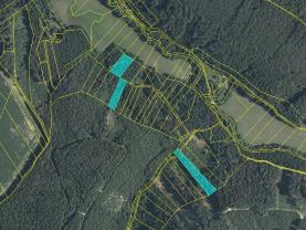 Prodej lesa, 10185 m², Leština