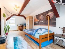 Prodej rodinného domu 5+1, 243 m², Radnice, ul. Na Potocích