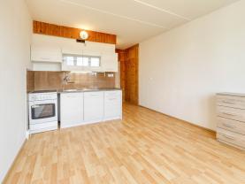 Prodej bytu 1+kk, 25 m², Nové Sedlo, ul. Revoluční