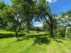 Prodej, pozemek, 1388 m², Brloh