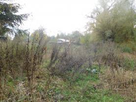 pozemek (Prodej pozemku, 1651 m², Stružnice), foto 2/4
