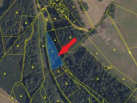 Prodej lesa, 2805 m², Cotkytle