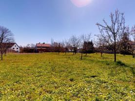Prodej pozemku k bydlení, 1638 m², Suchdol nad Odrou