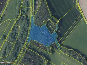 Prodej lesa, 16361 m², Písek - Hradiště