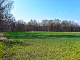 Prodej, pozemek k bydlení, 2326 m², Dolní Tošanovice