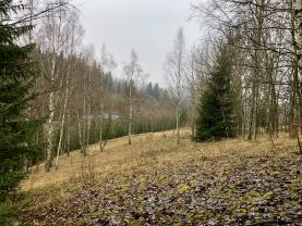 Prodej, louka, les, 5226m2, Smržovka