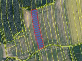 Prodej pole, 4345 m², Přehořov