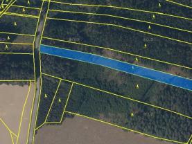 Prodej lesa, 5438 m², Sloupnice