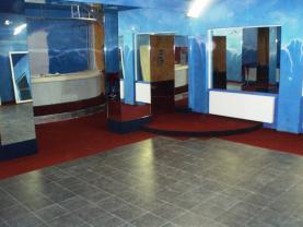 Prodej obchod a služby, 316 m², Havlíčkův Brod